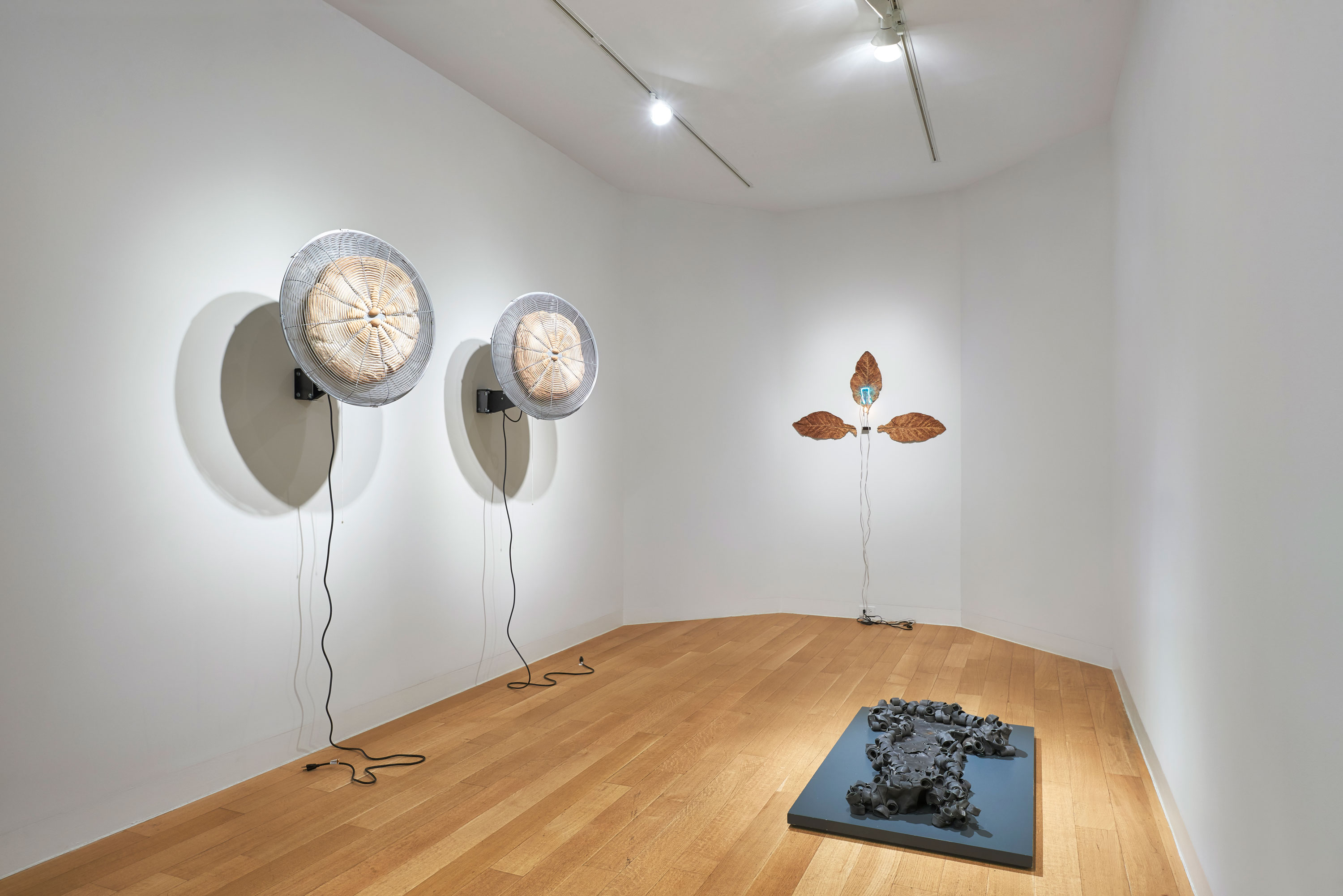 <p>Arte Povera and After</p>
