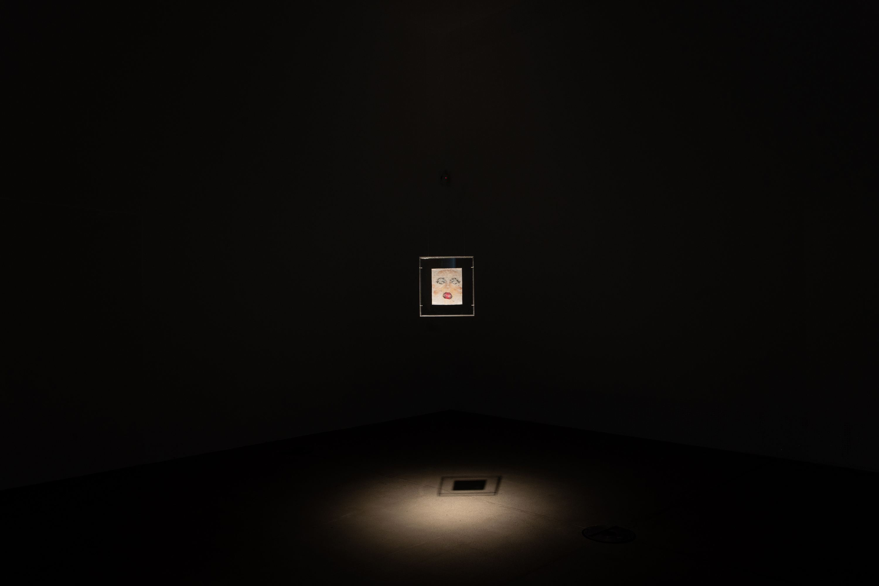 <p>Narrative Reflections on Looking</p>